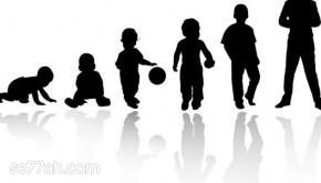 مراحل النمو عند الإنسان